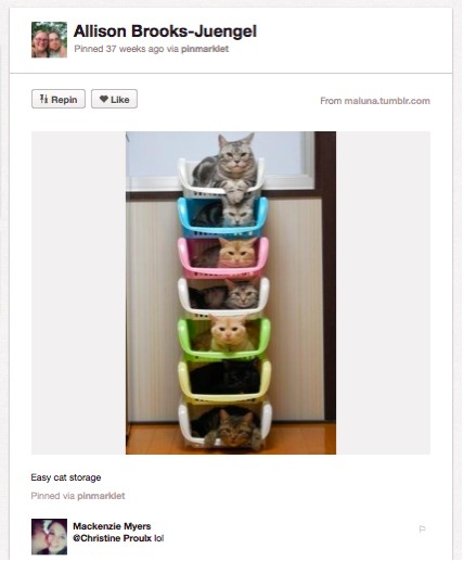 An image of 6 cats stacked on top of one another on special cat shelves.