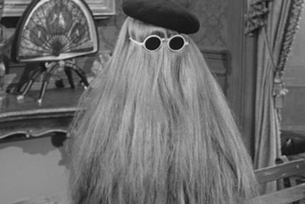 An image of Cousin Itt, covered in hair, from the Adams Family TV show.