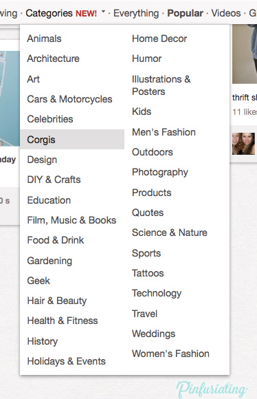 An image of the category list of Pinterest, including the new Corgi category.
