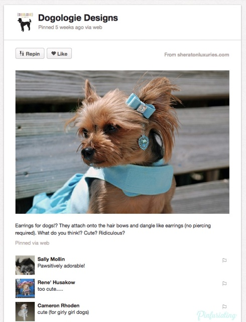 Screencap of a Pinterest pin with a dog and a tiffany blue earring.